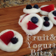 Fruit & Yogurt Bites